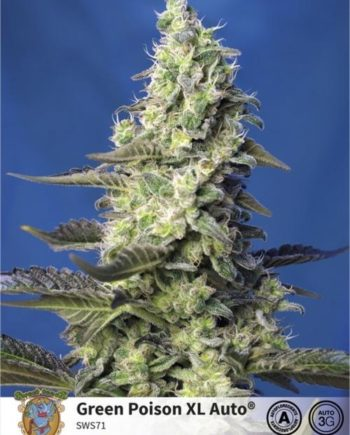 Sweet Seeds Green Poison XL Auto